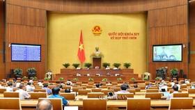 ĐB Cao Thị Xuân (Đắk Lắk) cho rằng Viện Kiểm sát nhân dân là cơ quan chức năng thực hành quyền công tố, không có chức năng nhiệm vụ về giám định tư pháp