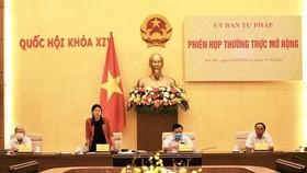 Chủ nhiệm Ủy ban Tư pháp Lê Thị Nga chủ trì phiên họp