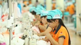 Xét tương quan trong với thế giới và khu vực, Việt Nam đang làm tốt hơn về chi tiêu cho y tế và an sinh xã hội, hiệu suất thu thuế cao, và thúc đẩy các quyền của phụ nữ trong lao động