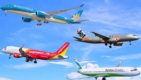Dự kiến trong năm 2020, doanh thu của các hãng hàng không giảm hàng chục nghìn tỷ đồng