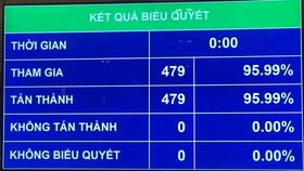 Kết quả biểu quyết về cơ cấu số lượng thành viên Chính phủ