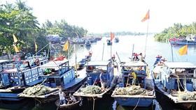 Với đặc thù nghề cá nhỏ lẻ, Việt Nam đang bị cảnh báo thẻ vàng của Ủy ban châu Âu (EC) từ tháng 10-2017