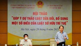 Chủ nhiệm Ủy ban Pháp luật Hoàng Thanh Tùng chủ trì hội thảo  
