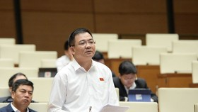 Đại biểu Nguyễn Minh Đức (TPHCM)