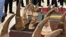 Phát hiện gần 100kg nghi sừng tê giác tại kho hàng khu vực sân bay Tân Sơn Nhất