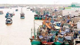 Cấm phương tiện thủy rời bến trên các tuyến ảnh hưởng bão số 12