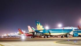 Cảnh giác đối tượng lừa đảo mua vé máy bay về nước tránh dịch