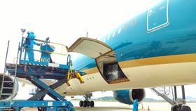 180.000 bộ kit xét nghiệm nhanh được vận chuyển bằng đường hàng không