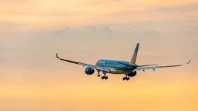 Cục Hàng không Việt Nam lên kế hoạch phục hồi bay nội địa