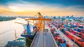 Yêu cầu công khai giá cước vận tải container bằng đường biển