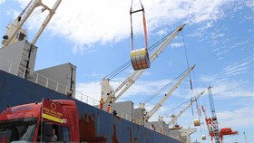 Thanh tra Chính phủ công bố nhiều sai phạm trong việc cổ phần hóa Cảng Quy Nhơn