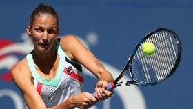 """US Open 2017: Nỗi ám ảnh """"Nữ hoàng không ngai"""""""