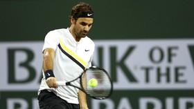 Federer đã có 16 trận toàn thắng kể từ đầu mùa