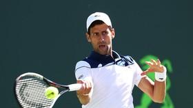 Novak Djokovic phải trải qua trận thua thứ 3 liên tiếp trong mùa