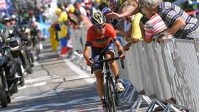 Các khán giả tìm cách tiếp cận Nibali trên đường đua