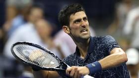 """Djokovic phấn khích sau chiến thắng """"giúp Federer báo thù"""""""