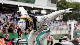 Hamilton trang trọng cúi đầu chào khán giả sau chiến thắng ở Sao Paulo