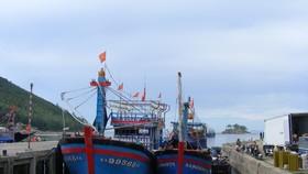 Nghệ An: Gần 56 tỷ đồng xây kè tránh bão cho tàu thuyền