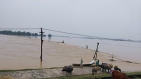 Nghệ An: 7 người chết do mưa lũ