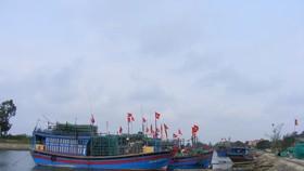 Từ 13 giờ hôm nay (7-7), Thanh Hóa cấm tàu thuyền ra khơi