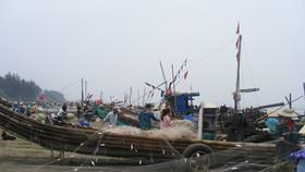 Đang đánh bắt cá, một ngư dân rơi xuống biển mất tích