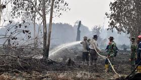 Malaysia, Indonesia: Đóng cửa hàng trăm trường vì cháy rừng