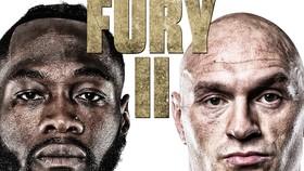 Hình ảnh quảng bá trận Wilder - Furry II