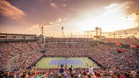WTA Rogers Cup 2020 bị hủy