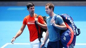 Djokovic và Murray là 2 người có rất nhiều hoạt động trên mạng xã hội để kêu gọi mọi người ở nhà và cách ly