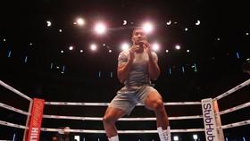 AJ sẽ mang hơi thở chiến tranh và giết chóc đến trận tái chiến