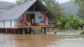 Đắk Lắk bị thiệt hại nặng do hoàn lưu bão số 6