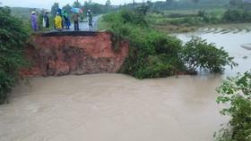 Đắk Lắk: Mưa lớn, hàng trăm nhà dân, hoa màu bị nhấn chìm