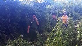 Bắt nghi phạm giết, hiếp bé gái đi chăn bò tại Gia Lai