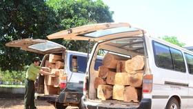 Bắt giữ vụ vận chuyển 7m³ gỗ trái phép