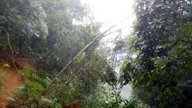 Đi qua điểm sạt lở, một người ở Kon Tum bị nước cuốn tử vong