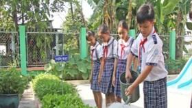 Giai đoạn 2008-2020 xây dựng mô hình trường học xanh