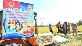 Nông dân xã Hòa Phong tuyên truyền bầu cử trên đồng ruộng