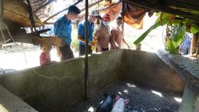 Các đội trí thức trẻ tình nguyện xây dựng nông thôn mới tư vấn cho người dân về kỹ thuật chăn nuôi, đảm bảo chuồng trại để không bị ảnh hưởng của dịch bệnh