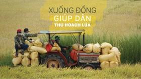 Xuống đồng giúp dân thu hoạch lúa