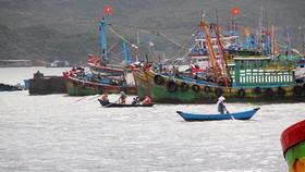 Chấm dứt tình trạng tàu cá Việt Nam vi phạm quy định đánh bắt thủy sản