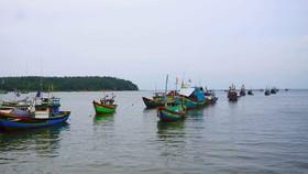 Chống khai thác hải sản bất hợp pháp