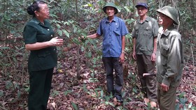 Cuộc chiến giữ rừng Mã Đà