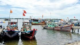 Giải pháp cấp bách chống khai thác hải sản bất hợp pháp