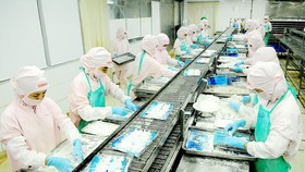 Sản xuất thực phẩm chế biến xuất khẩu tại một đơn vị. Ảnh: THÀNH TRÍ