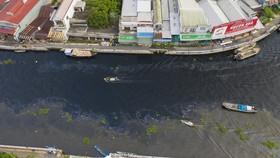 Dòng nước đen trên sông Cái Lớn là do rơm rạ phân hủy