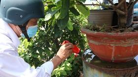 Cán bộ y tế phường Tân Quý, quận Tân Phú kiểm tra công tác phòng chống sốt xuất huyết  tại hộ dân trên địa bàn. Ảnh: THÀNH AN