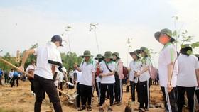 Đưa chương trình trồng 1 tỷ cây xanh thành phong trào thi đua