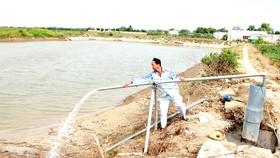 Nhiều tỉnh ĐBSCL công bố khẩn cấp thiên tai do xâm nhập mặn cấp độ 1