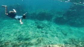 Du khách trải nghiệm tour lặn ngắm san hô ở biển Phú Quý. Ảnh: L.C.