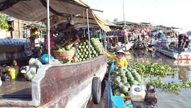 Người dân miền Tây tính số chục tùy theo loại trái và tùy theo từng địa phương